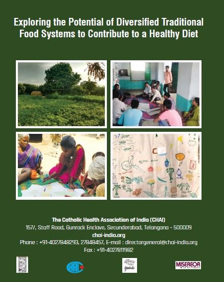 Exploring the Potential of Diversified Traditional Food Systems to Contribute to a Healthy Diet