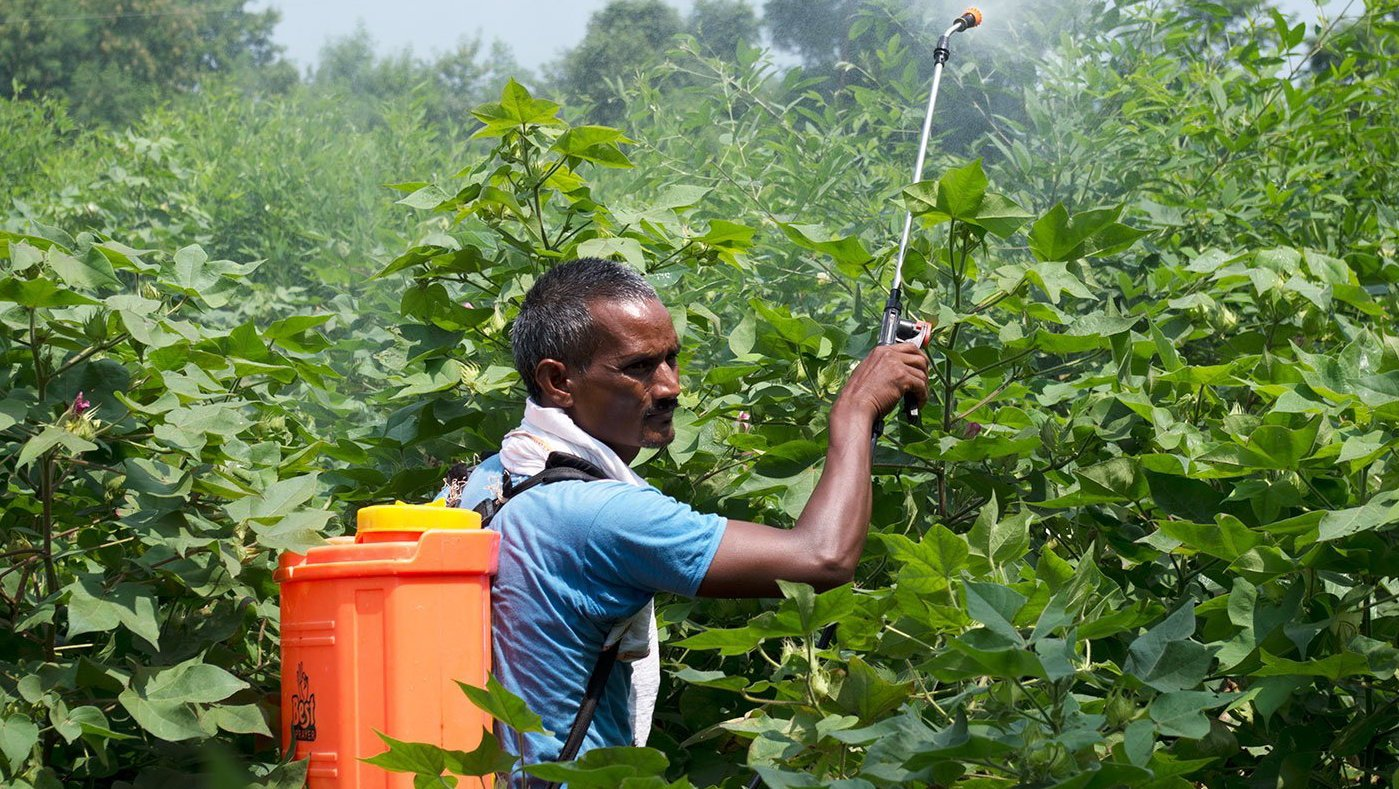 Man spraying pesticide on crops