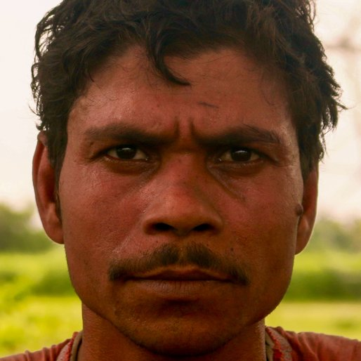 ALIMUDDIN MONDAL is a Labourer from Katabele, Haringhata, Nadia, West Bengal