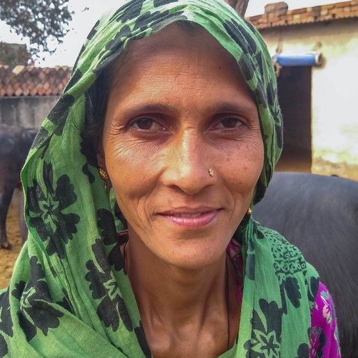 Pavita Devi is a Dairy farmer, farmer and homemaker from Khushpura, Jatusana, Rewari, Haryana