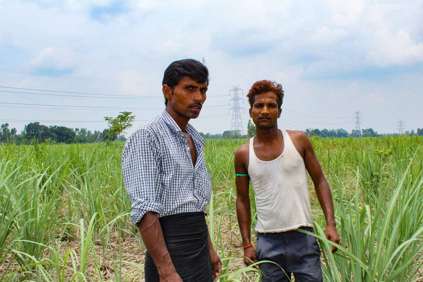 Pramod Kumar with his brother Sandeep Kumar in the fields