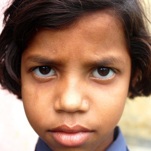 Tiya Hazra is a Class 3 student from Kalitala , Beldanga-I , Murshidabad, West Bengal