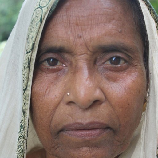 Nasera Bibi is a Not recorded from Kalitala , Beldanga-I , Murshidabad, West Bengal
