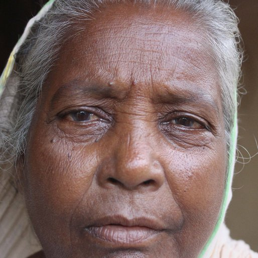 Haritan Bewa is a Homemaker; other occupation details not recorded  from Salar (town), Bharatpur-II, Murshidabad, West Bengal