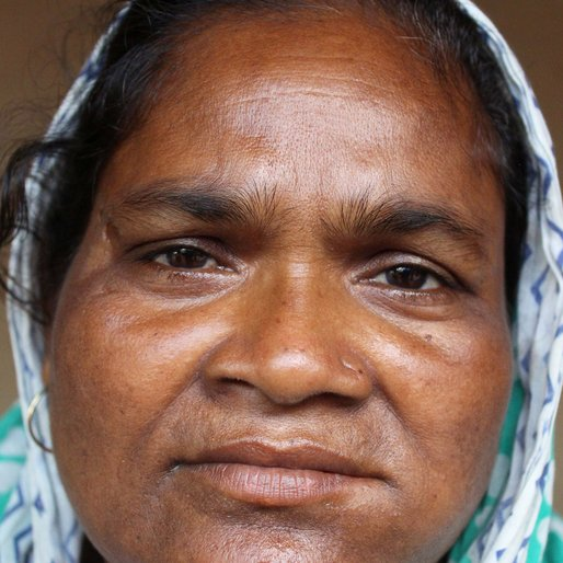 Kajali Bibi is a Homemaker; other occupation details not recorded  from Salar (town), Bharatpur-II, Murshidabad, West Bengal