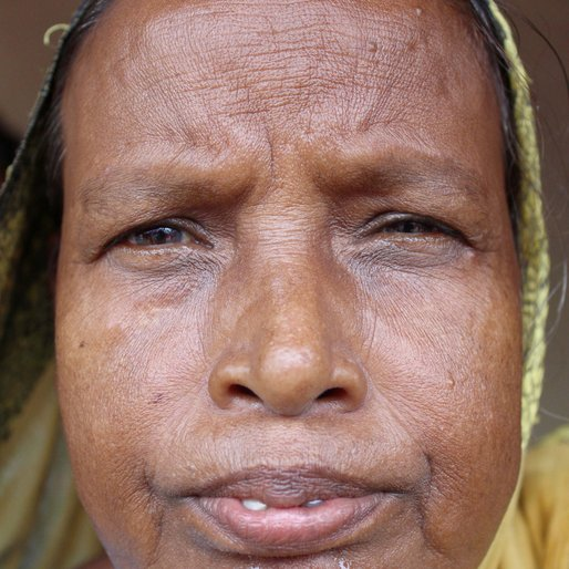 Hazi Bewa is a Homemaker; other occupation details not recorded  from Salar (town), Bharatpur-II, Murshidabad, West Bengal
