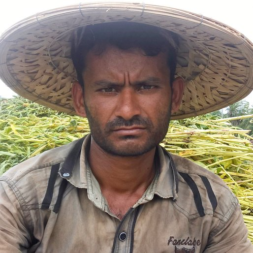 MUSTAFA MULLICK is a Bullock cart driver from Sheoratala, Kaliganj, Nadia, West Bengal