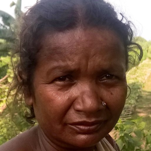 NAYANI BISWAS is a Cowherd from Mahisbathan, Karimpur II, Nadia, West Bengal