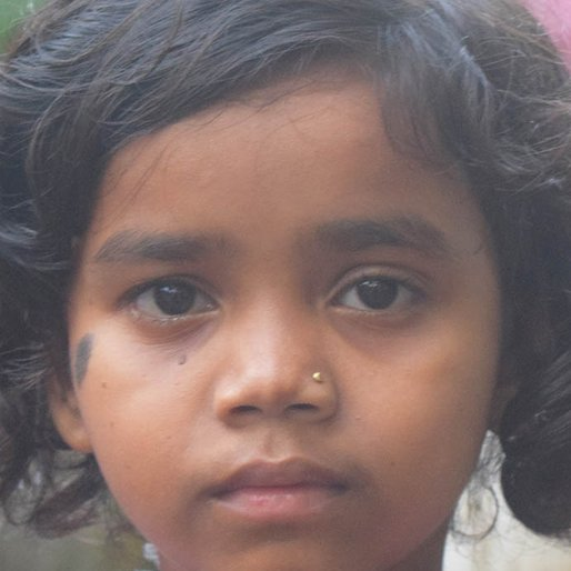 Kiran is a Student from Purba Gopalnagar, Mandirbazar, South 24 Parganas, West Bengal