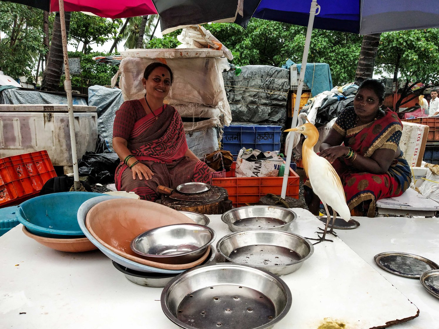 Harsha Tapke (left), who has been selling fish for 30 years, speaks of the changes she has seen. With her is helper Yashoda Dhangar, from Kurnool district of Andhra Pradesh