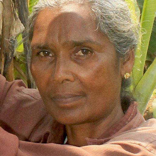 MARYKUTTY MOHANAN is a Plantain plantation worker from Karimkulam Chappath, Kattappana, Idukki, Kerala