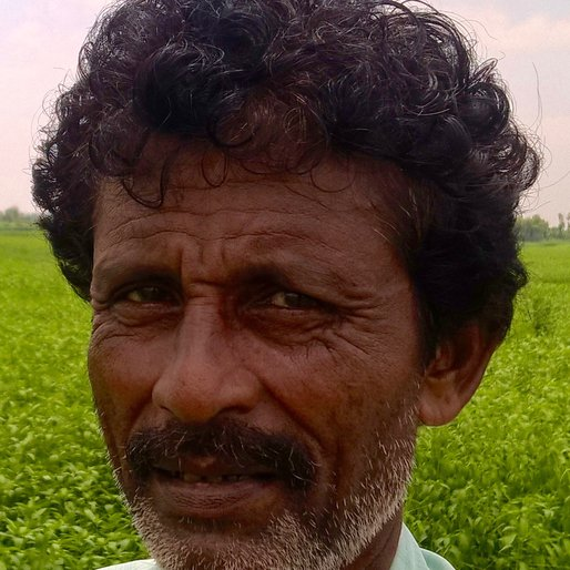 NIBARAN PAL is a Agricultural labourer from Gashapara, Nakashipara, Nadia, West Bengal