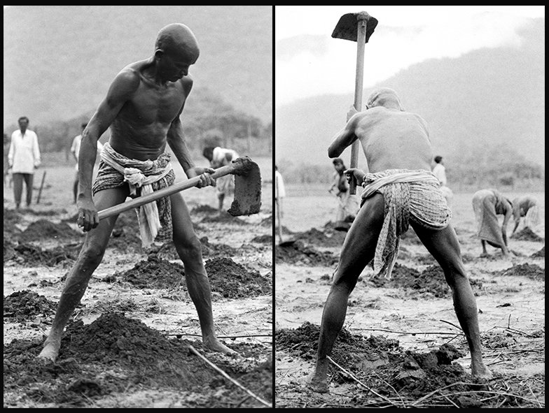 A man working in the field