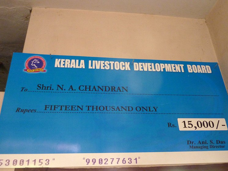he cheque from the Kerala Livestock Development Board handed over to Chandran Master by the agriculture minister
