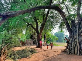 Bastar's balancing act is child's play