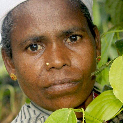 PUSHAPA MURUGAN is a Pepper plantation worker from Karimkulam Chappath, Kattappana, Idukki, Kerala