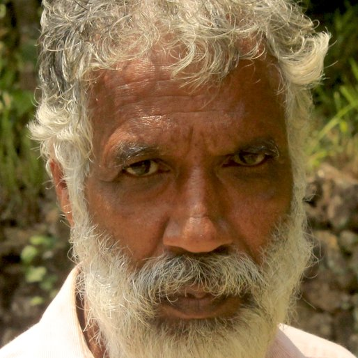 RAJU K.R is a Collects and sells medicinal plants from Thoppipala, Kattappana, Idukki, Kerala