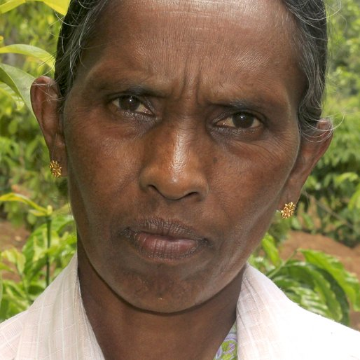RAMANI KURISHUMUTHU is a Paddy plantation worker from Aladi, Kattappana, Idukki, Kerala