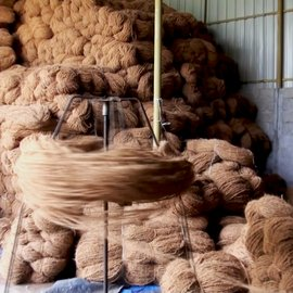 The shifting strands of coir_V. Sasikumar 1