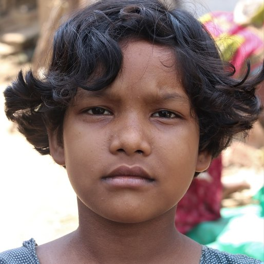 Subhashree Bhoi is a Student (Class 4) from Kusikana, Nimapada, Puri, Odisha