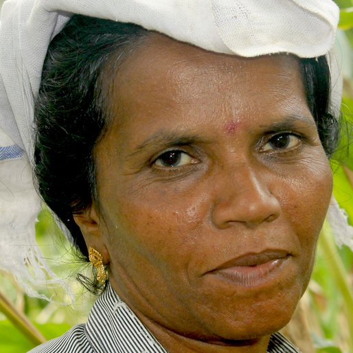 SUJATHA GANESH is a Cardamom plantation worker from Aladi, Kattappana, Idukki, Kerala