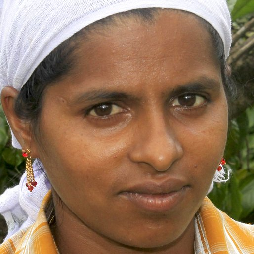SUNI SHIJO is a Coffee plantation worker from Karimkulam Chappath, Kattappana, Idukki, Kerala