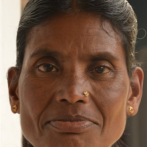 SUSHEELA MEGUR is a Domestic worker from Sringeri, Sringeri, Chikmagalur, Karnataka
