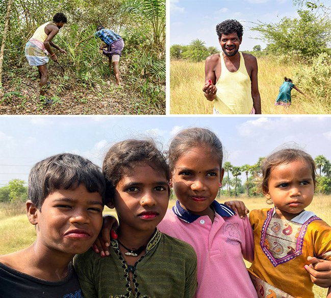 Top row: Manigandan and Krishnan find a kuttikizhangu climber in the forest; Krishnan's teeth turn red from the 'lipstick fruit'. Bottom: For the Irula children of Bangalamedu, the red-staining fruit is a delight