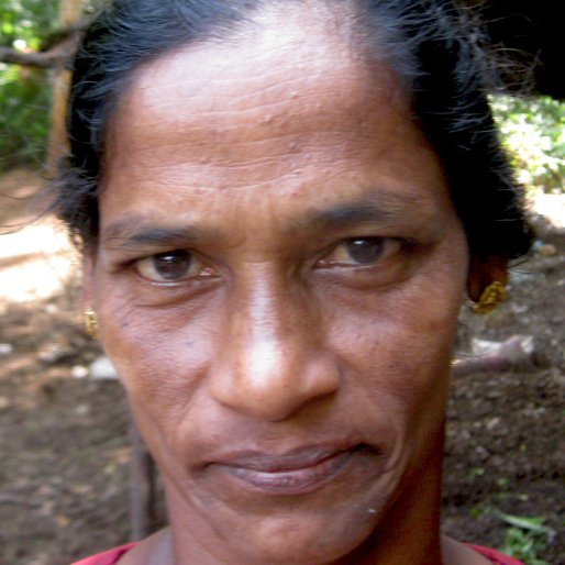 VALSAMMA KOSHY is a Cattle farm worker from Neduvathoor, Kottarakkara, Kollam, Kerala
