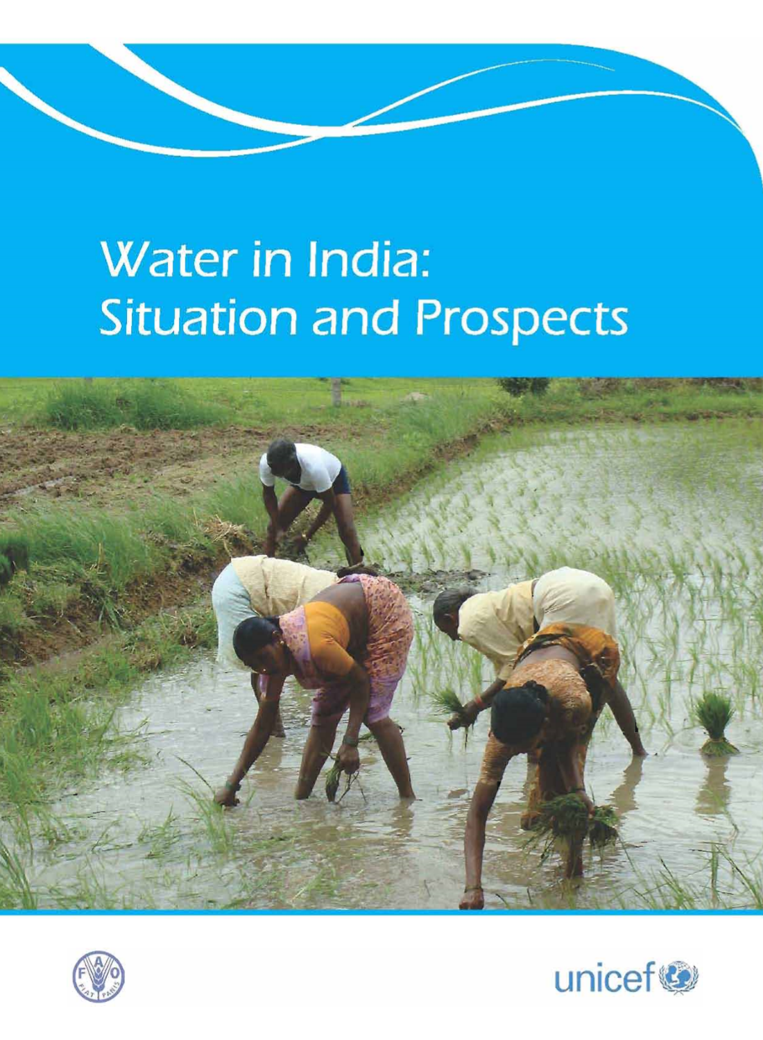 Water in India: Situation and Prospects