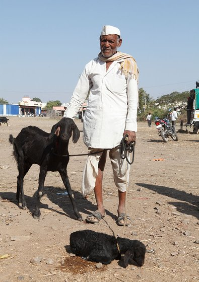Old man with goats.
