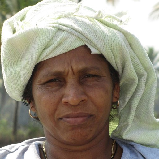 BELLA CARVALHO is a Small farmer (paddy) from Curtorim, Salcette, South Goa, Goa
