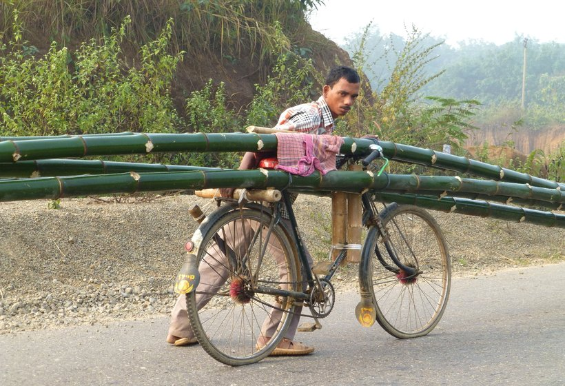 Ratan Biswas carries five bamboos, each 40-45 feet in length, balanced on and tied to his bicycle.