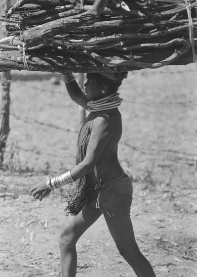 Tribal woman carrying firewood on head
