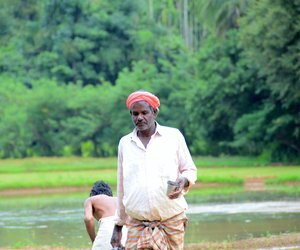 Farmer holding steel tumbler next to paddy field