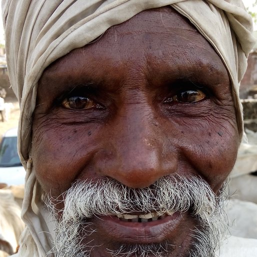 KISANRAO RAUT is a Cattle herder (landless) from Gunj, Dhamangaon, Amravati, Maharashtra