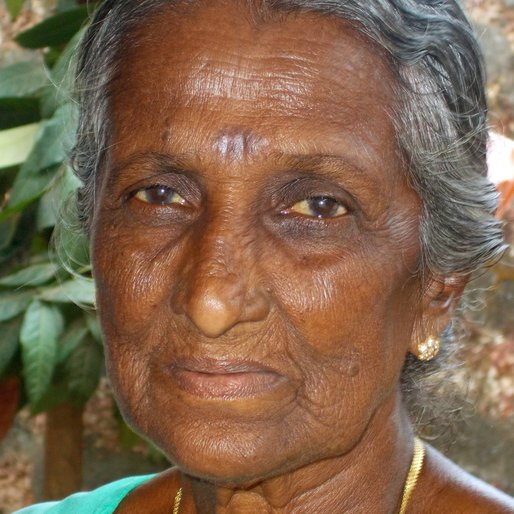 LAKSHMI is a Fish cutter from Kozhikode, Kozhikode, Kozhikode, Kerala