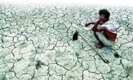 Maharashtra govt says mulling farmer insurance as opposition cites TOI's suicide reports