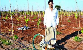 The man with 48 borewells in drought-hit Marathwada