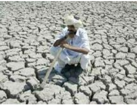 Drought hits 90 lakh farmers in Maharashtra